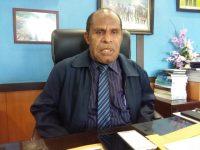 Pemekaran Provinsi di Papua Tak Jamin Kesejahteraan, Justru Bisa Picu Konflik